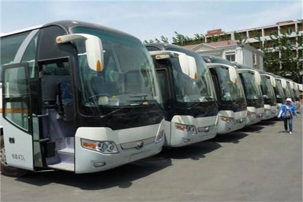 北京中巴租车哪家好-如何选择性价比高的中巴租车公司